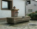 Dorfbrunnen3.jpeg