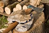 Wald_Brennholzpreise_1