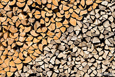 Wald_Brennholzpreise_2