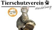 Tierschutzverein Heidelberg und Umgebung e.V.